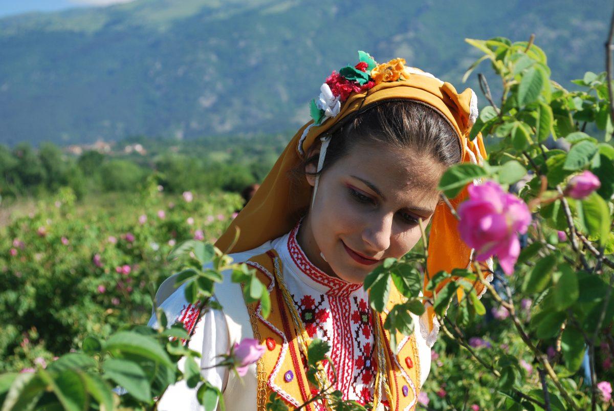 Karlovo-Rose-Picker