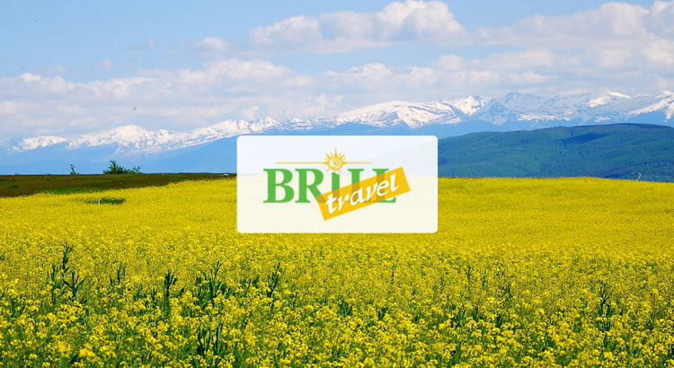 brill-travel-logo-soc-wide